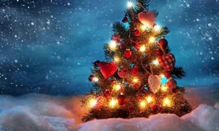 Обичаји прослављања Нове године