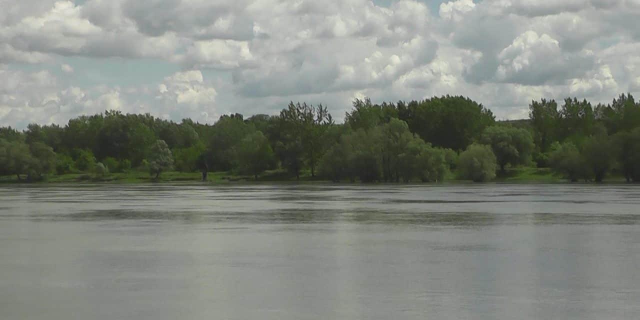 Дан Дунава