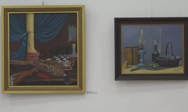 U muzeju grada otvorena izložba slika Maria Buculjevića